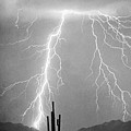 Bw Lightning From Heaven by James BO  Insogna
