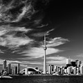 Bw Skyline Of Toronto by Andriy Zolotoiy