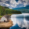 By The Lake by Gabriela Insuratelu