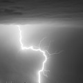 C2g Lightning Strike In Black And White by James BO Insogna
