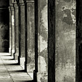 Cabildo Columns by KG Thienemann
