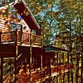Cabin Cutout by Dale Chapel