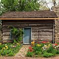 Cabin In The Tulip Patch by Terri Morris