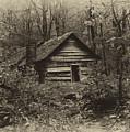 Cabin In The Woods by Ann Keisling