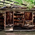 Cabin In The Woods by Ellen Heaverlo