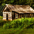 Cabin In The Woods by Lois Bryan