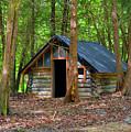 Cabin by Linda Kerkau