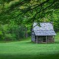 Cabin On The Blue Ridge Parkway - 1 by Joye Ardyn Durham