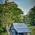 Cabin On The Blue Ridge Parkway - 10 by Joye Ardyn Durham