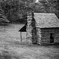 Cabin On The Blue Ridge Parkway - 5 by Joye Ardyn Durham