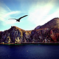 Cabo And The Cliffs by Joan  Minchak