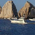 Cabo San Lucas - Sport Fishing by Anthony Totah