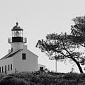 Cabrillo Lighthouse 3 by Marta Robin Gaughen