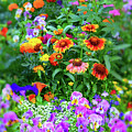 Summer Symphony Of Color by Brian Tada
