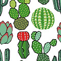 Cacti by Kelly Jade King