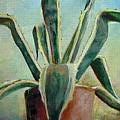 Cactus 2 by Muriel Dolemieux