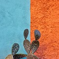 Cactus And Colorful Wall by Matt Suess