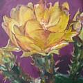 Cactus Blossom On Purple Background by Aleksandra Buha