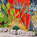 Cactus Garden  by Fred Jinkins