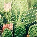 Cactus In Blossom  by Carlaj Sanders