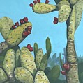Cactus On Vicky by Dennis Sullivan