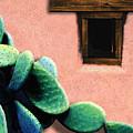 Cactus by Paul Wear