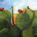 Cactus Pears by Chris Neil Smith