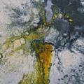 Cadence by Soraya Silvestri