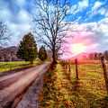 Cades Country Lane by Debra and Dave Vanderlaan