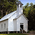 Cades Cove Baptist Church by David Lee Thompson