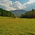 Cades Cove Pasture by Michael Peychich