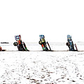 Cadillac Ranch Whiteout 001 by Lance Vaughn