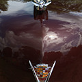 1949 Cadillac La Salle - Hood Ornaments by Yvonne Wright