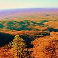 Caesars Head State Park by Lisa Wooten
