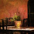 Cafe A La Sombra by Hal Halli