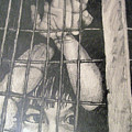 Caged by Jean Haynes