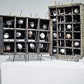 Caged Virgin by Mihaela Nicolcioiu-Savu