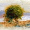 Cagnes Landscape 1910 by Renoir PierreAuguste