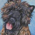 Cairn Terrier Brindle by Lee Ann Shepard