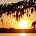 Cajun Sun by Nicholas Blackwell