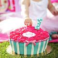 Cake Smash Pink Cake With Blue And White Stripes by Jan Pavlovski