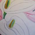 Cala Lillies by Barbara Yearty