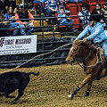 Calf Roper On Target by Jeff Kurtz