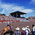 Calf Roping Event At Ellensburg Rodeo by Panoramic Images