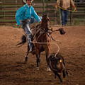 Calf Roping In Wyoming by Janice M LeCocq