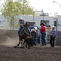 Calf Roping by Marj Beach