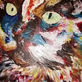 Calico Cat by Adeniyi Peter