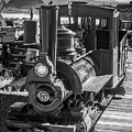 Calico Odessa Train In Black And White by Garry Gay