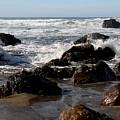 California Coast 12 by Lydia Miller