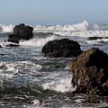 California Coast 18 by Lydia Miller
